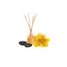 Olio per massaggi all'Arnica
